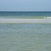 Beautiful Abundant Beach
