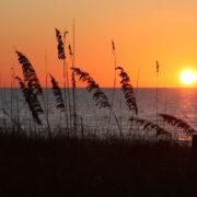 Sunset1230AMI