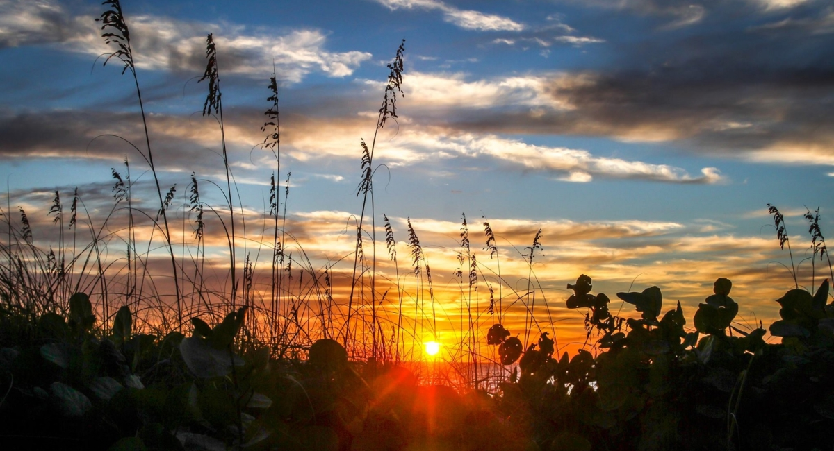 sunset at bamboo